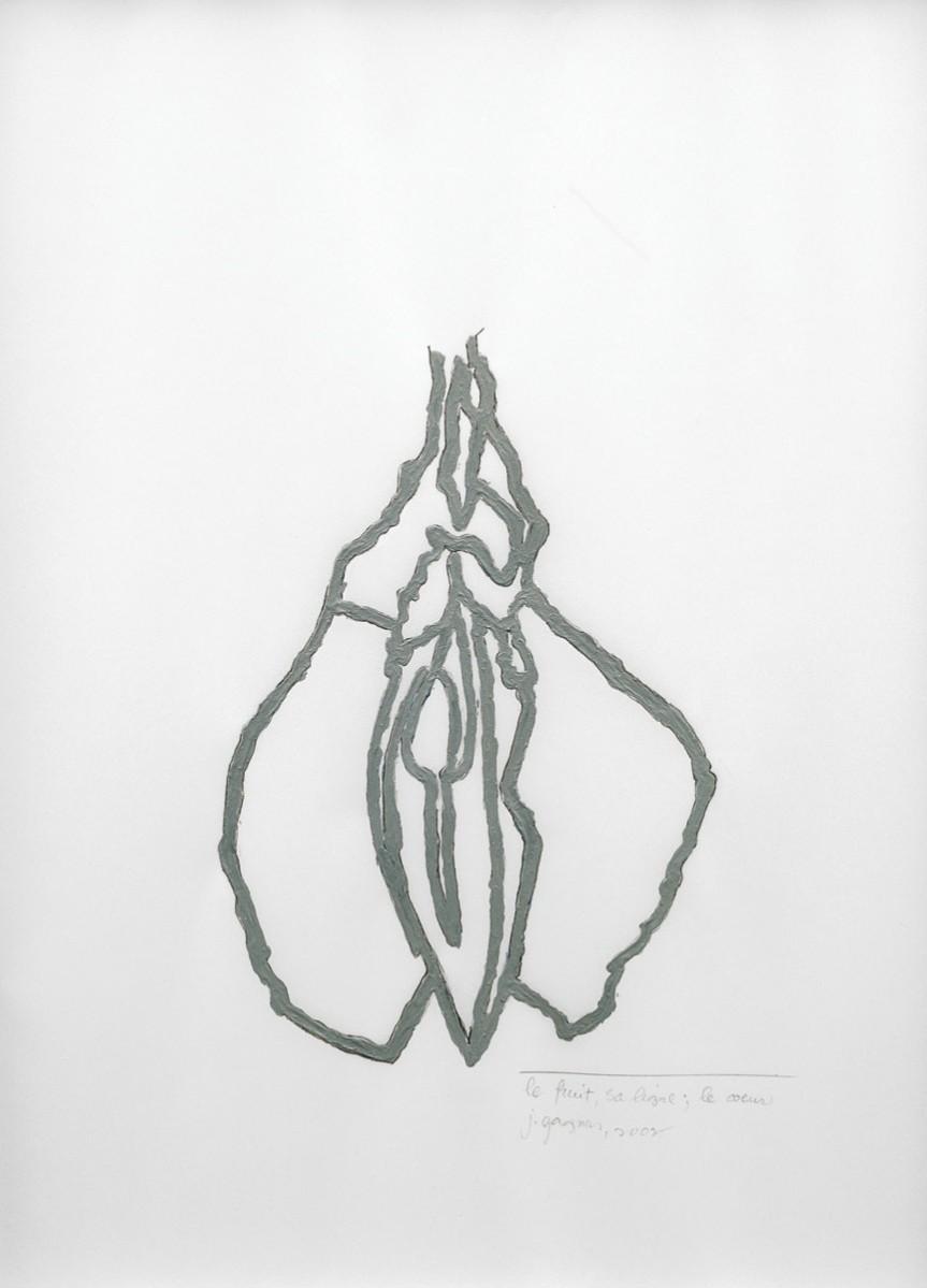 Johanne Gagnon, Le fruit, sa ligne. Galerie Plein-sud, 2003